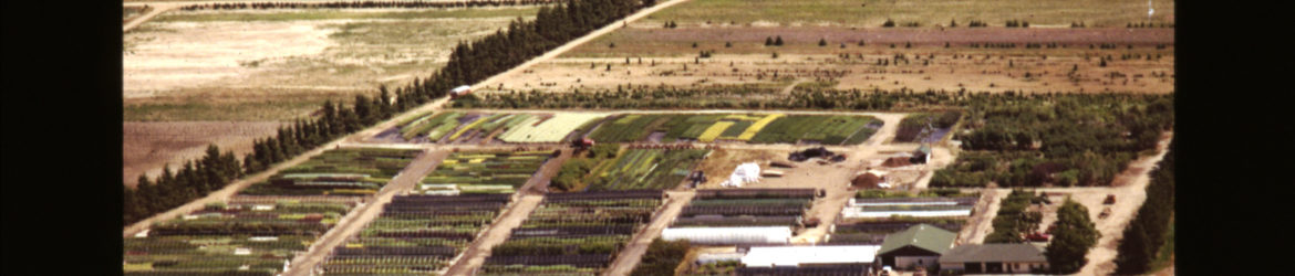 Klyn Nurseries Aerial View